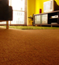 Carpet Repair Basics II